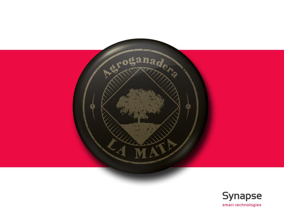 Branding: Agroganadera La Mata