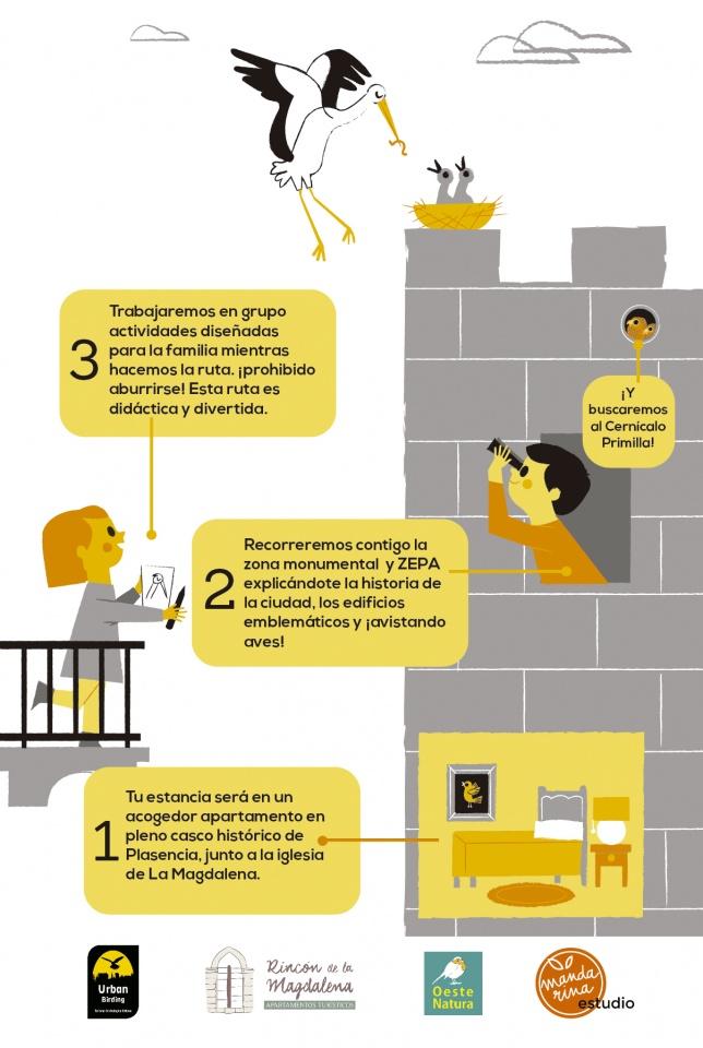 ilustración para proyecto pajareando