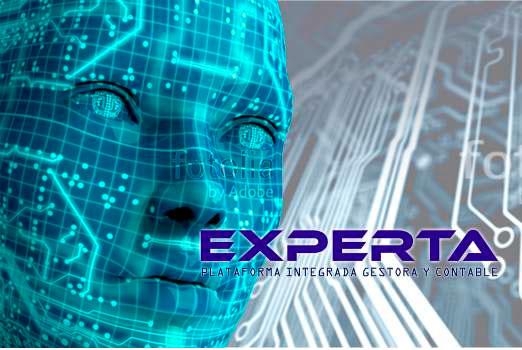 ERP Experta. Desarrollo propio. Adaptable a sus requerimientos de trabajo.