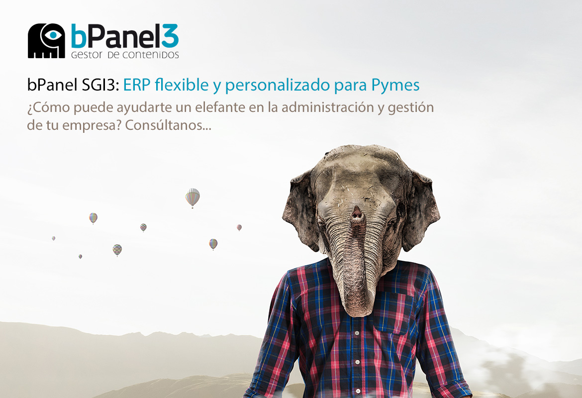 bPanel SGI3 ERP (Enterprise Resource Planning) flexible y personalizado para PYMES