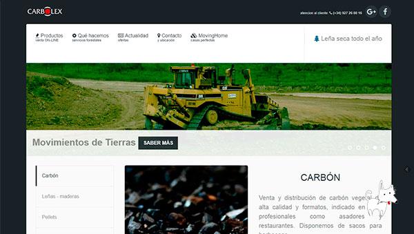 Creación de tienda online de venta de carbones y leña